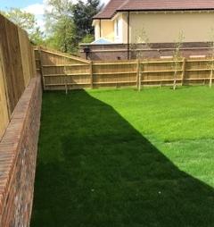 Fully established turf